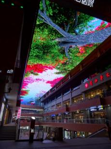 Modern China - This huge screen on a mall's ceiling was truely impressive
