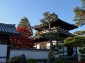 Tōfuku-ji Garden, Kyōto