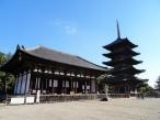 Nara also has a beautiful pagoda where nobody walks after having seen the Great Buddha.