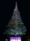 Hakodate christmas tree. Be glad there is no audio as the music was just terrible...