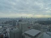 View over the not so green center of metropolis Tokyo.