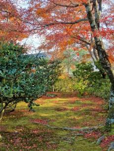 Tenryū-ji, Kyōto